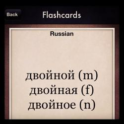 Russian Vocabulary Game