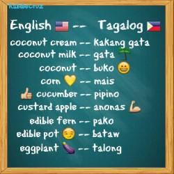 Tagalog Vocabulary Game